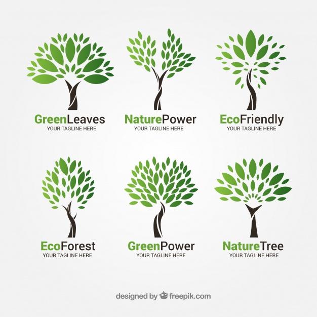 Flat Tree Branding Design