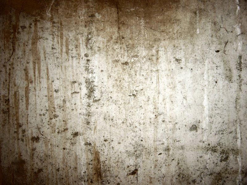 High Resolution Concrete Wall Textures