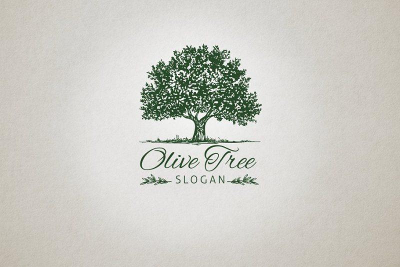 Olive Tree Logo Design