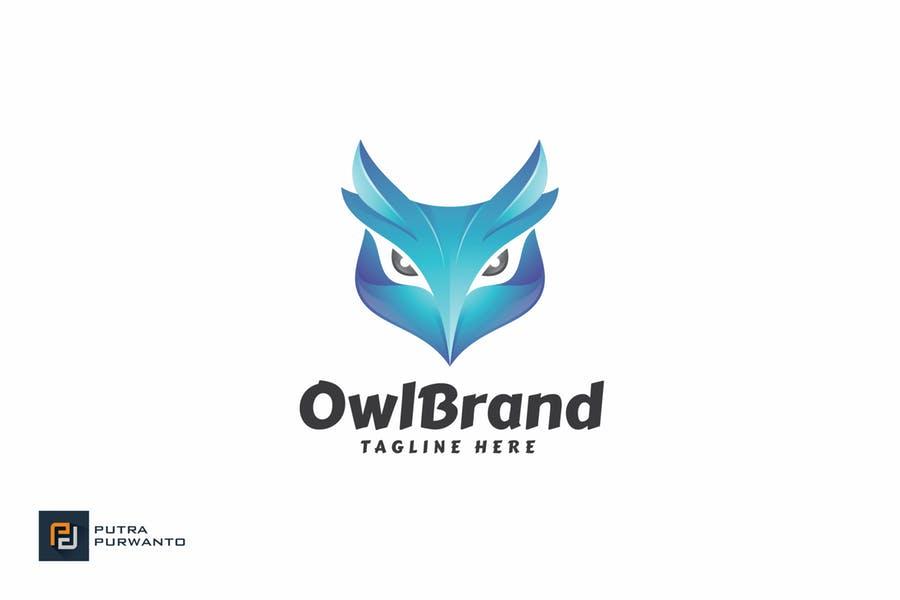 Owl Logo Branding Design