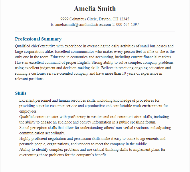 Professional CEO Resume Example