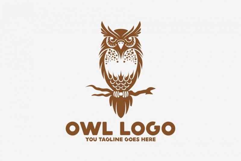 Scalable Owl Branding Design