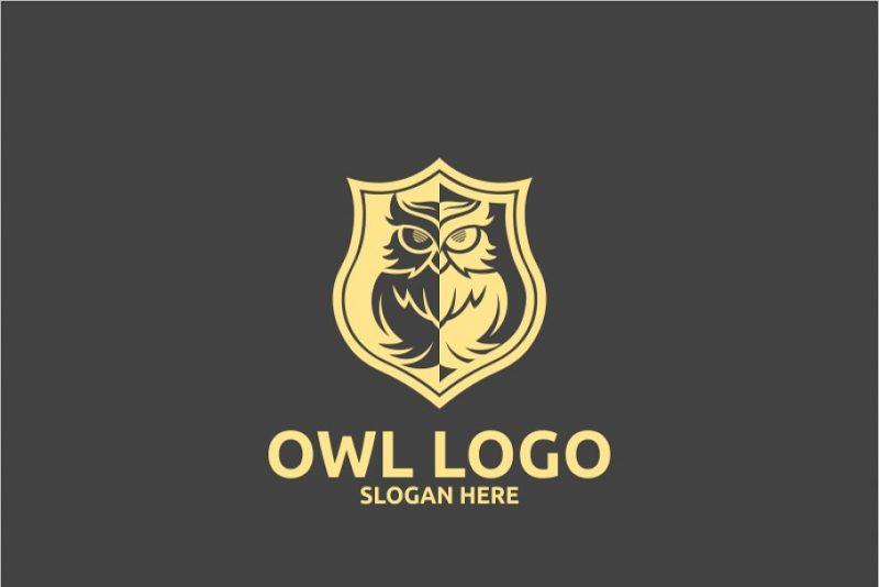 Shield Themed logo Design