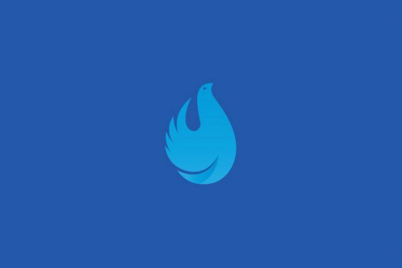 Simple Bird Logo Design