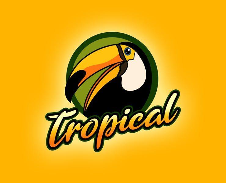 20+ Best Bird Logo Designs, Ideas and Examples