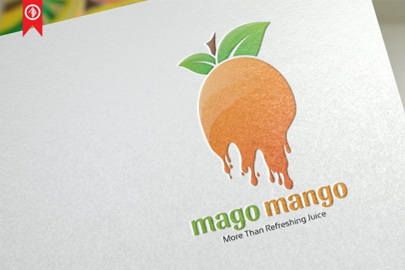 Fruit Juice Branding Logo