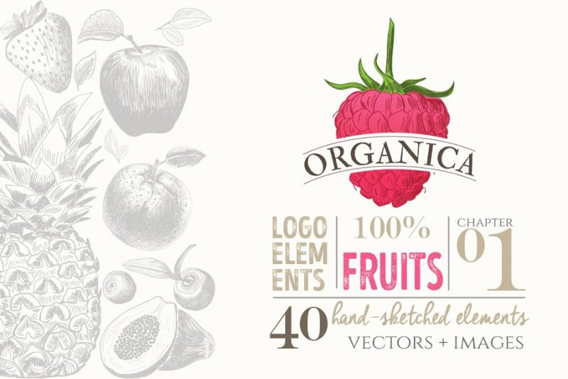 Organic Fruits Logo Design