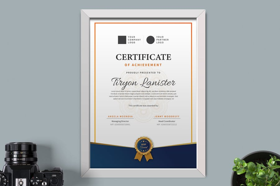 Ai and PSD Certificate Layouts