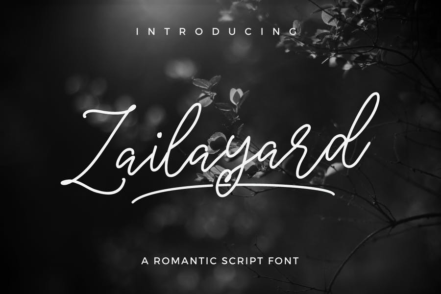 Modern Romantc Script Fonts