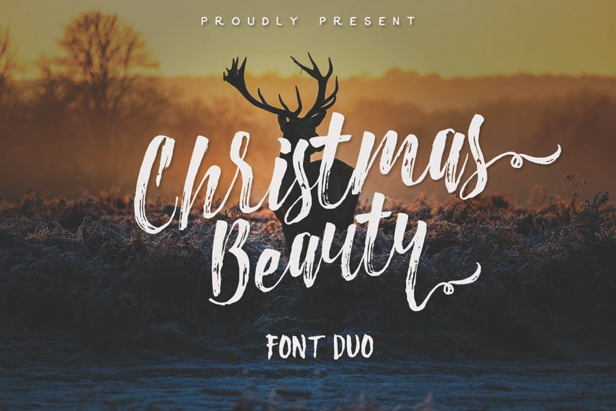 Christmas Beauty Duo Fonts