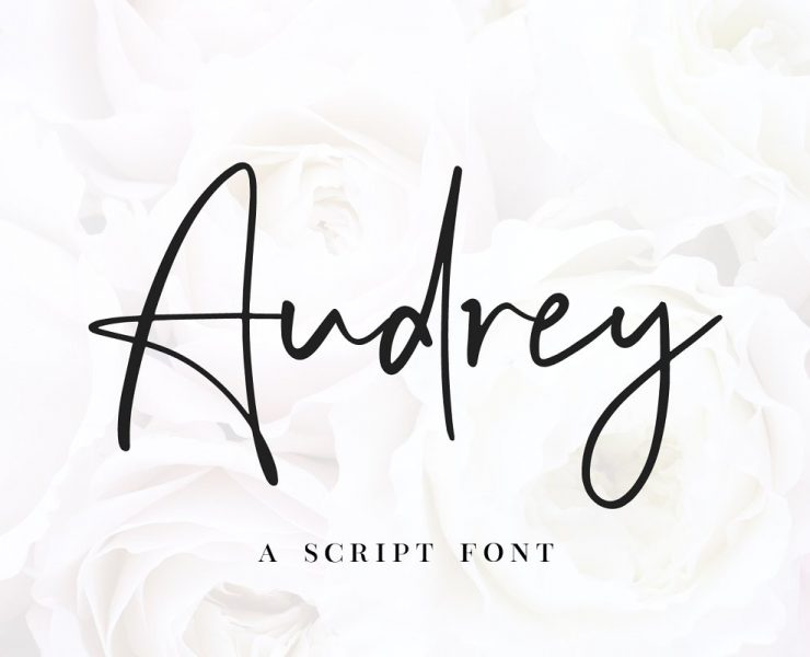 21+ Fancy Fonts OTF and TTF Download