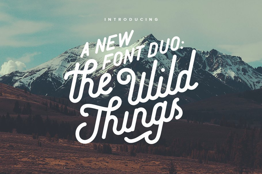 Handwritten Typography Fonts