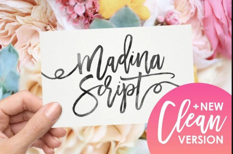 Clean Feminine Script Fonts