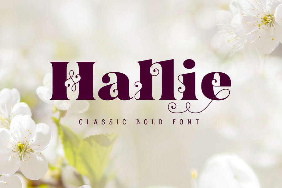 Curley and Classic Bold Fonts