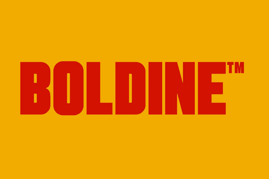 Bold and Urban Typefaces