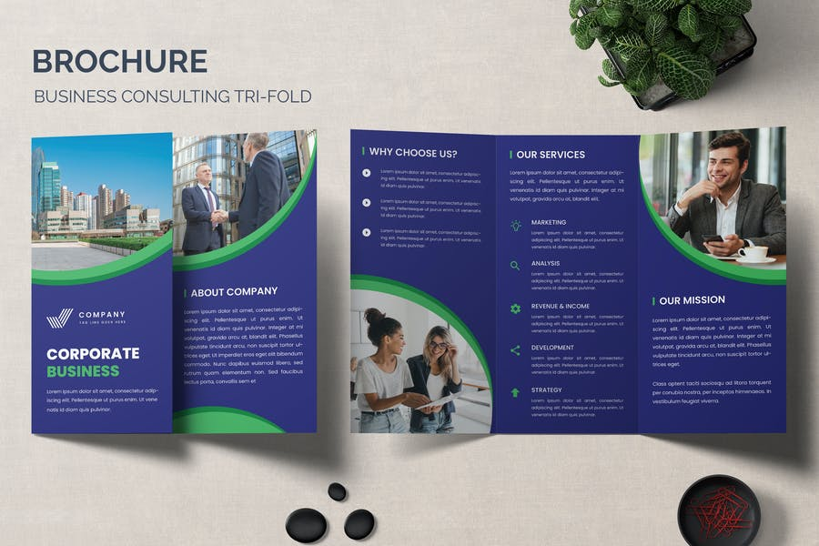 Consulting Business Brochure Design
