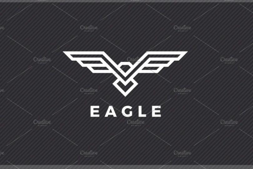 Eagle Flight Logo Idea