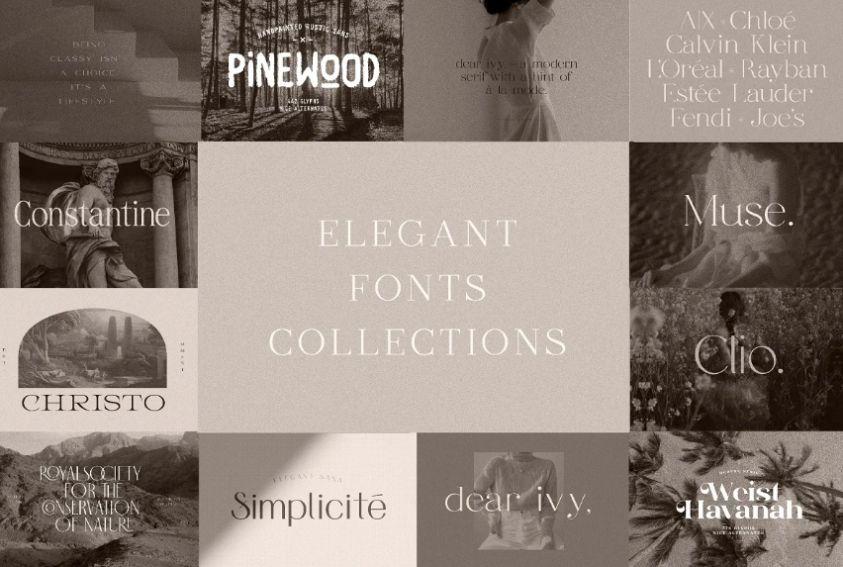 Elegant Font Bundle 2021