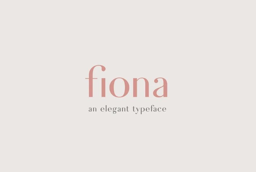 Elegant Magazine Lettering Fonts