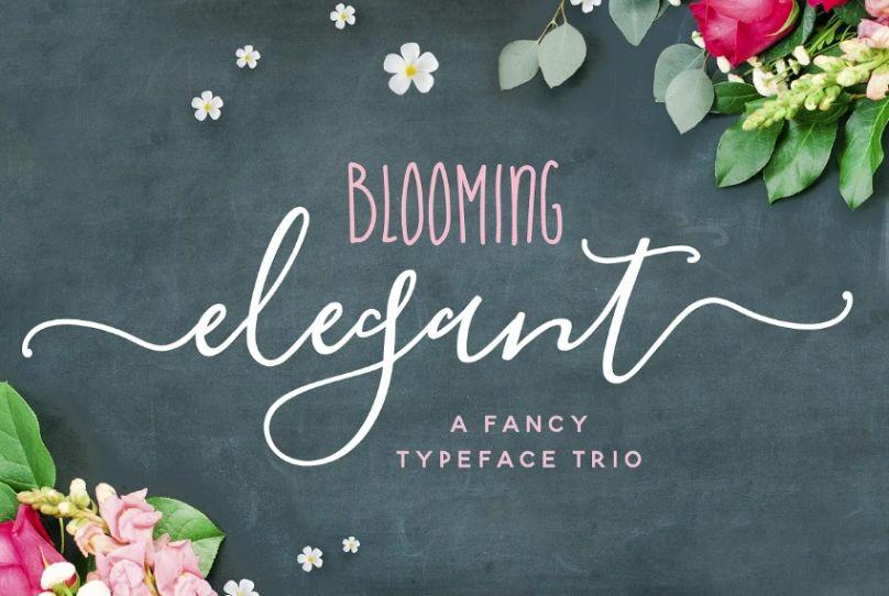 Elegant and Feminine Trio Font