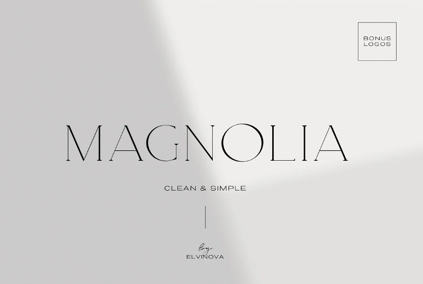 Thin and Classy Fashion Fonts