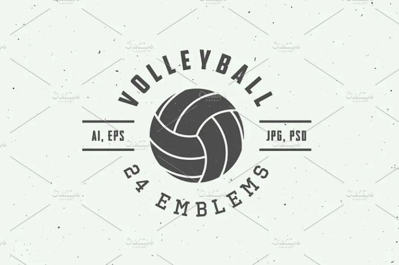 Volleyball Logo Design Emblem