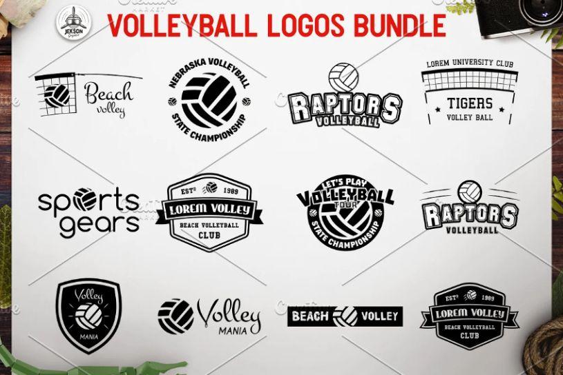 Volleyball Logos Bundle