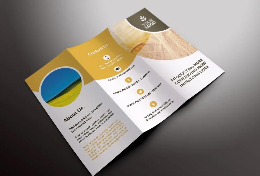 A4 Tri Fold Farm Brochure
