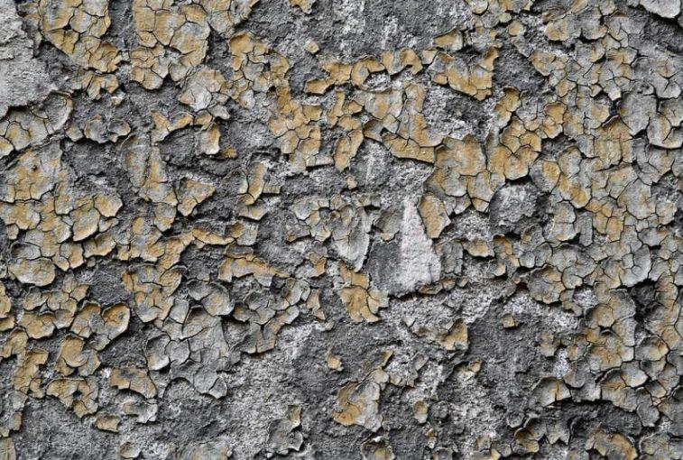 Cracked Peeling Texture