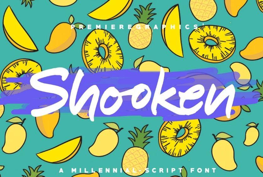 Creative Shooken Typefcae