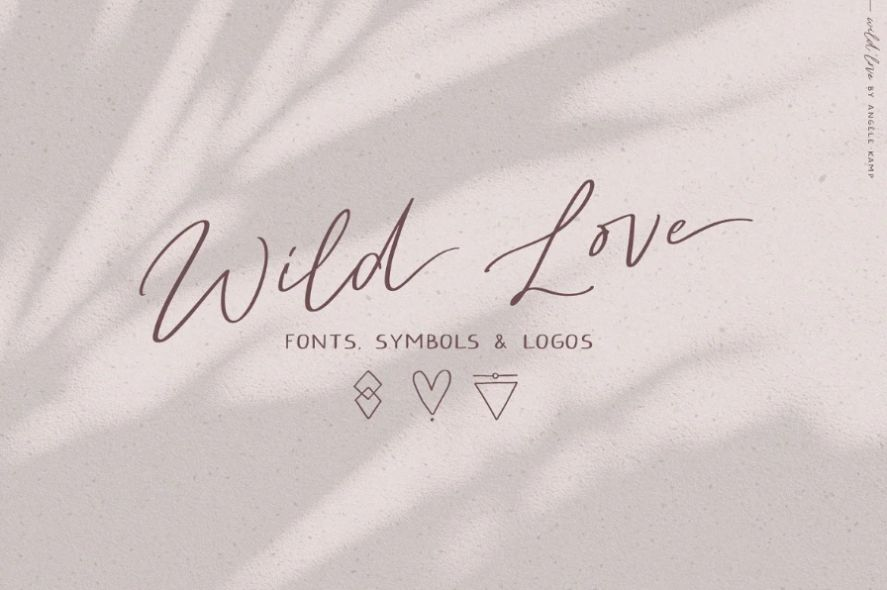 Creative Wild Love Fonts