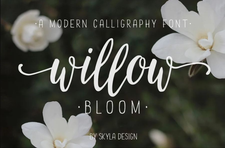 Modern Calligraphy Bloom fonts
