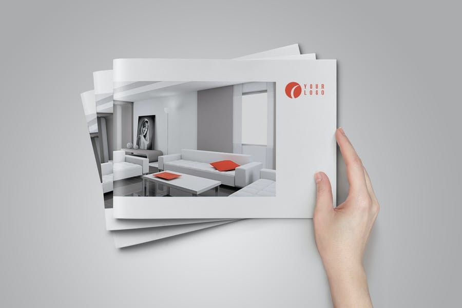Professional and InDesign Brochure