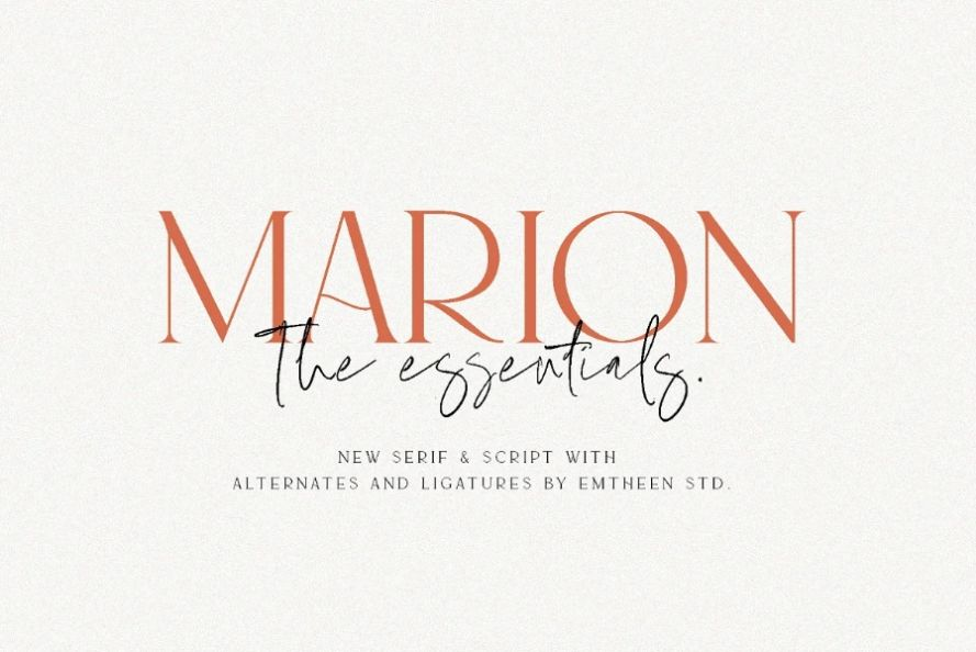Stylish Corporate Font Duo