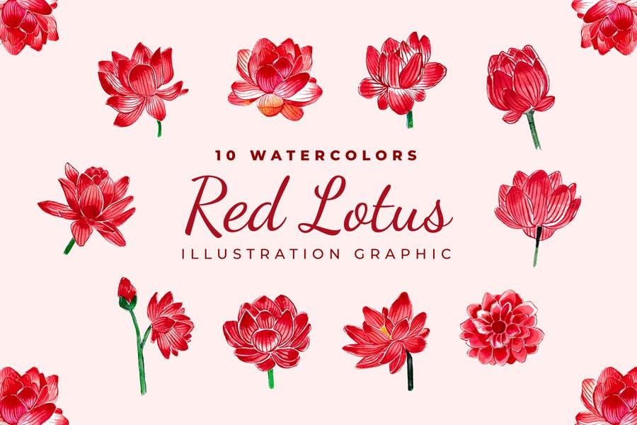 10 Watercolor Rose Flowe Objects