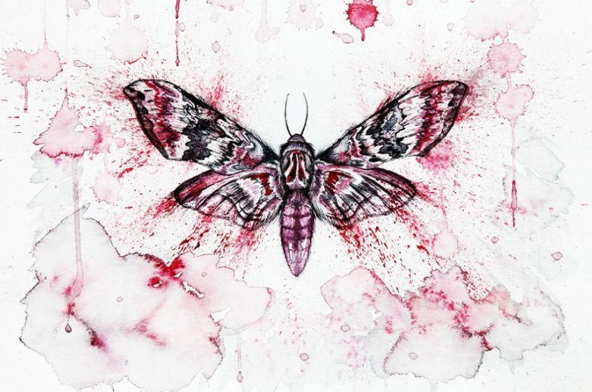 Artistic Moth Wallpaper Design