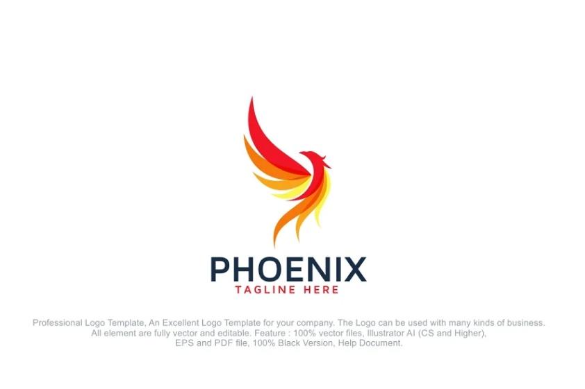 Bird Fire Logo Design Template