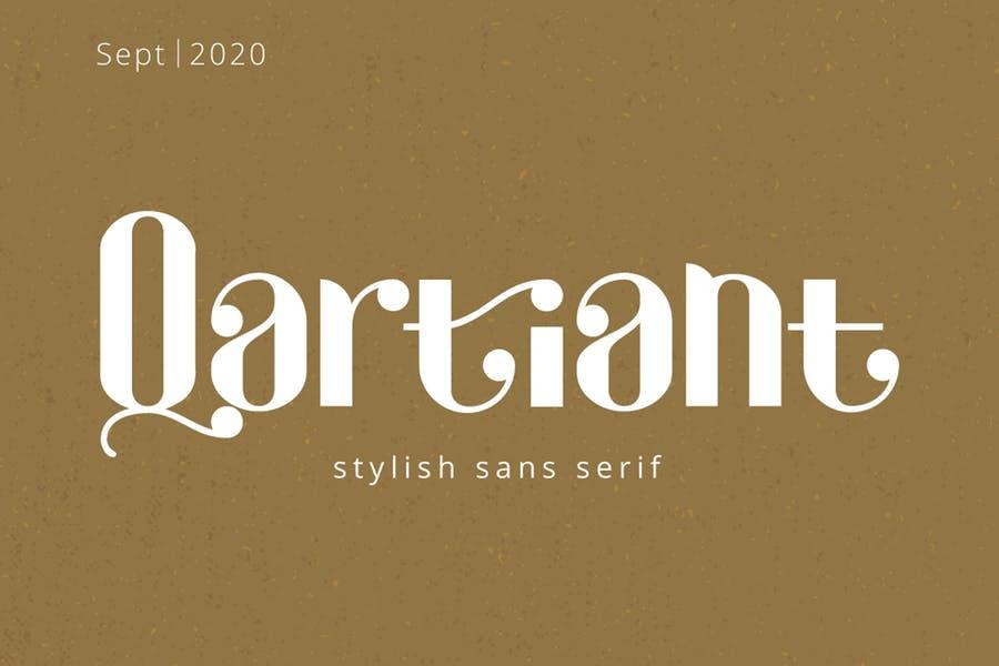Bold Style Magazine fonts