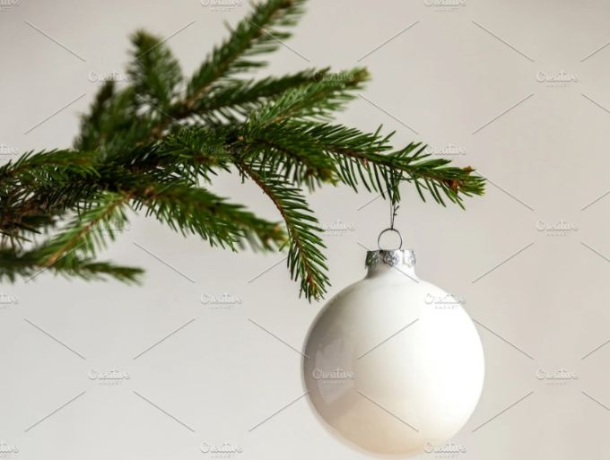 Christmas Branch Background