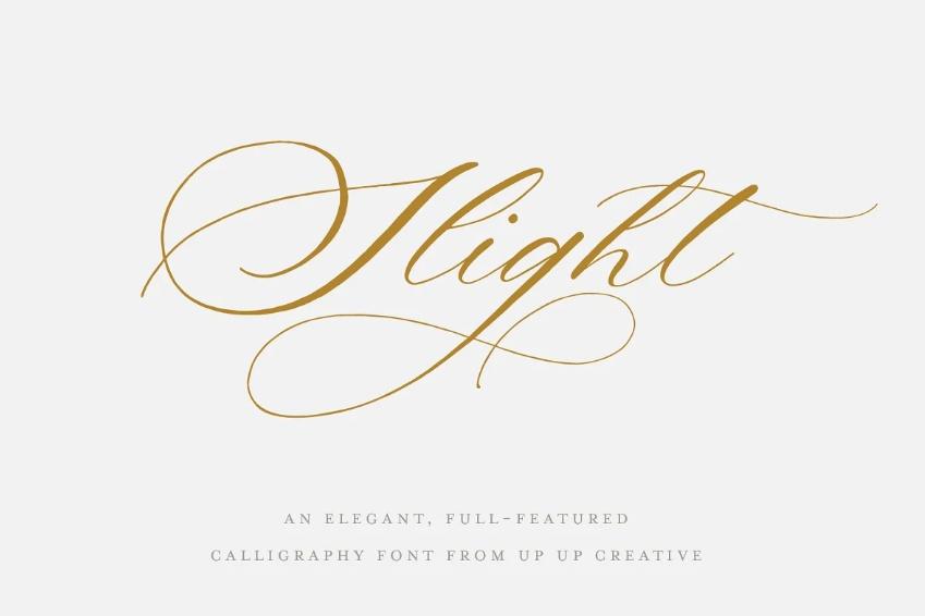 Elegant Calligraphy Style Typeface