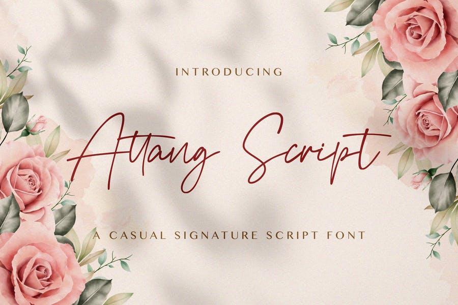Elegant Signature Typeface