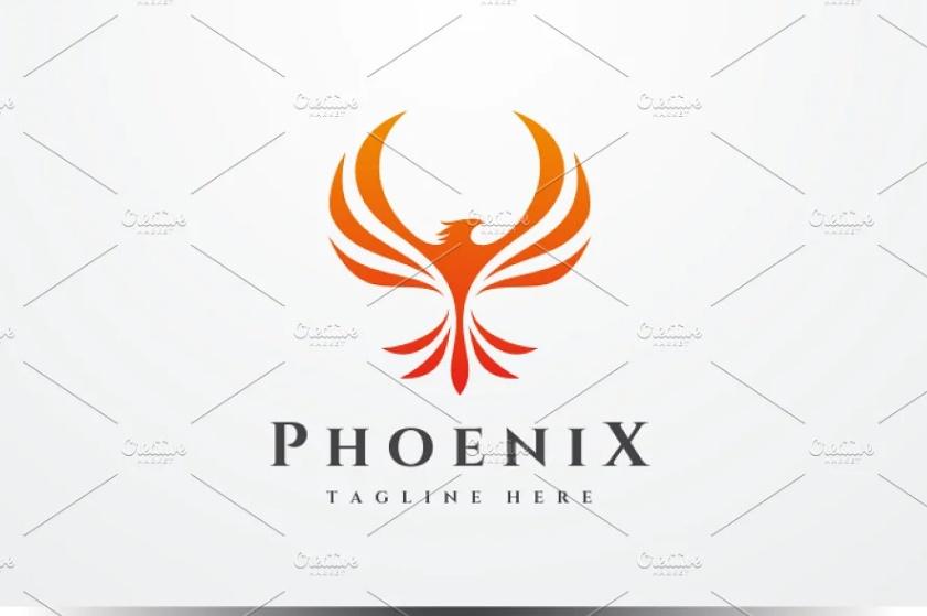 Flying Bird Identity Design