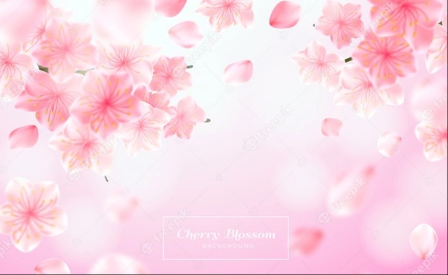 Free Blossom Backgrounds