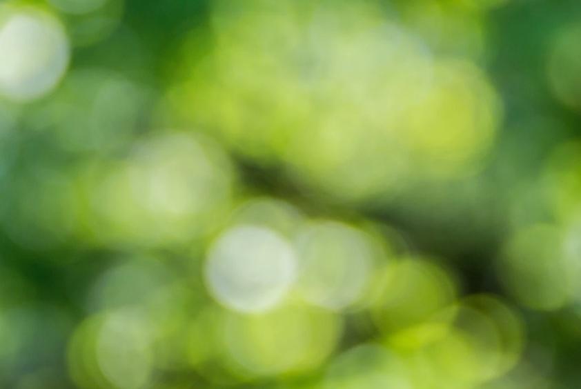Free Blurred Green Wallpaper