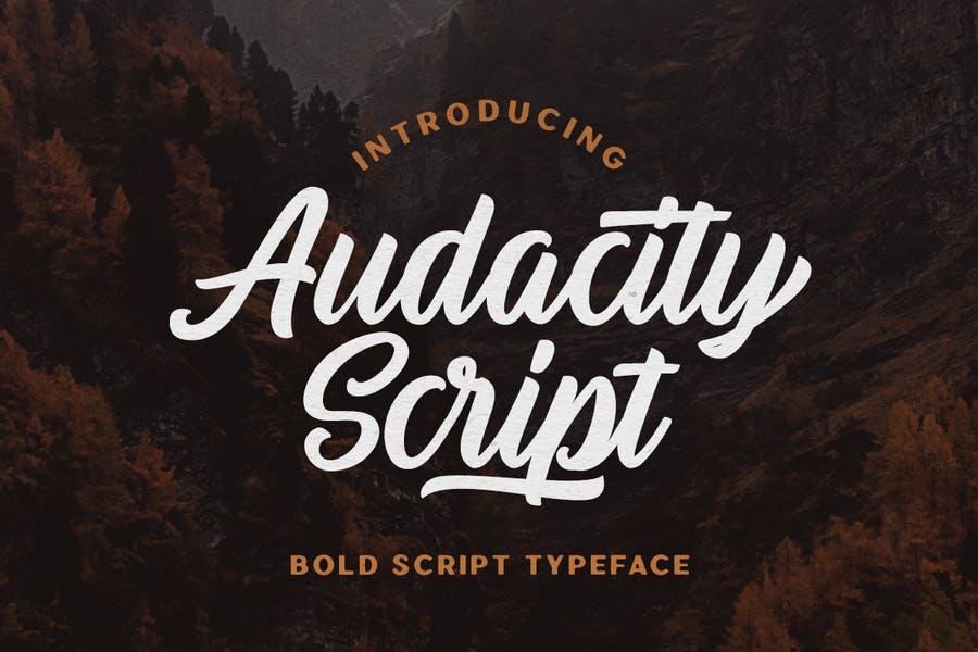 Hand Lettered Script Fonts