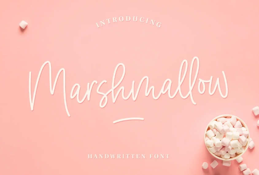 Hand Lettering Swashes Fonts