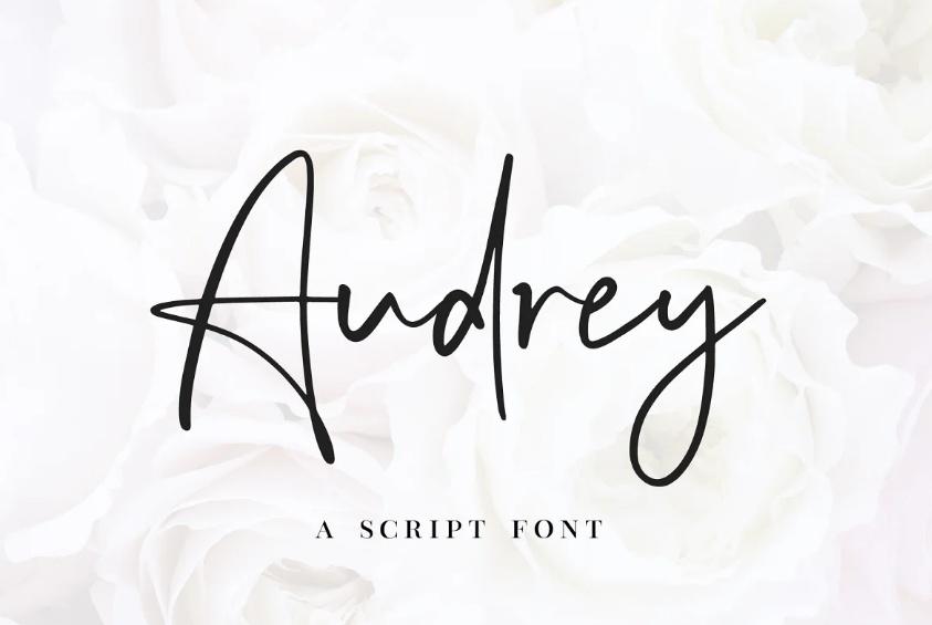 Hand Written Marker Script Font