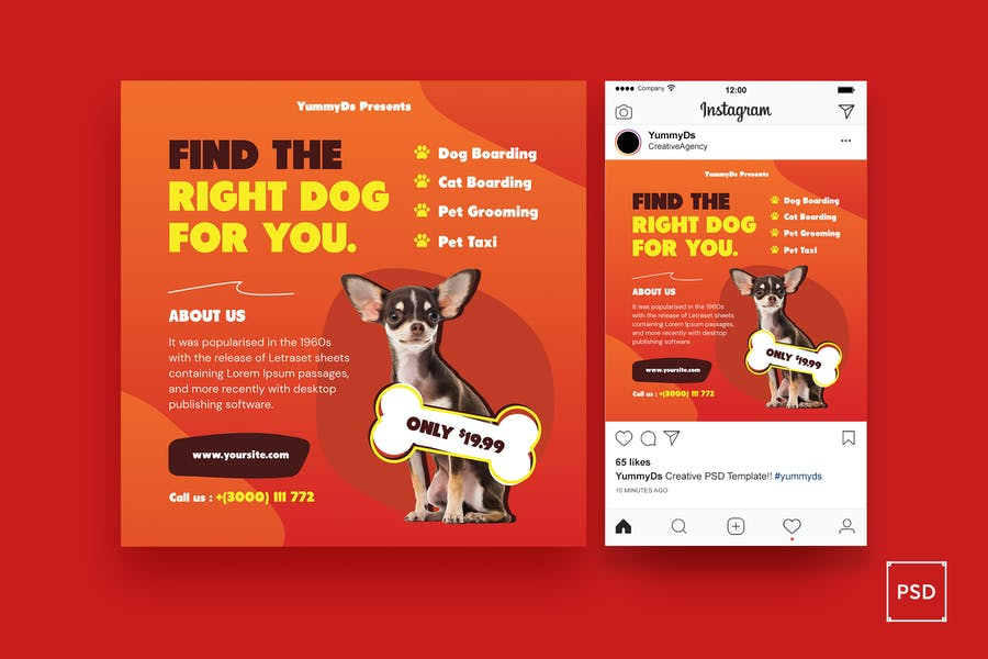Pet Care Flyer and Instagram Post Template