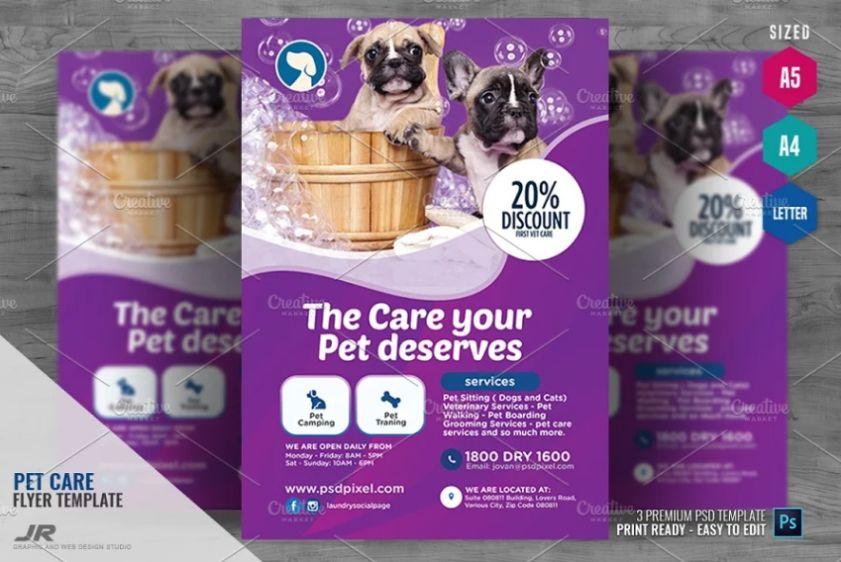 Pet Care Promotional Flyer