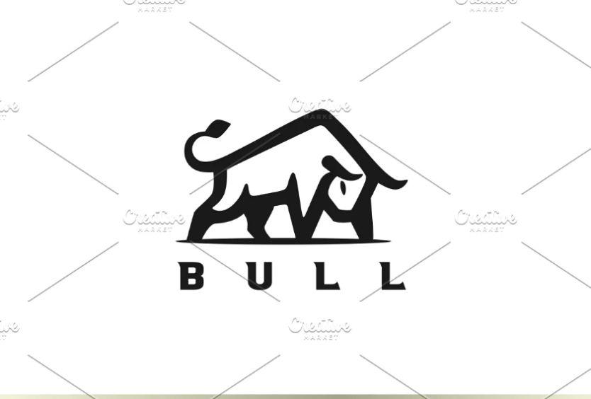 Raging Bull Branding Identity
